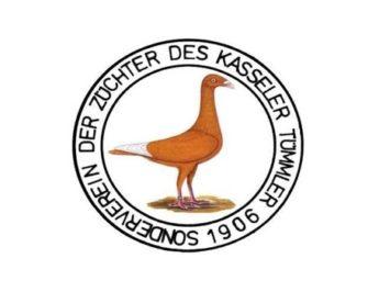 logo-kasseler-tuemmler