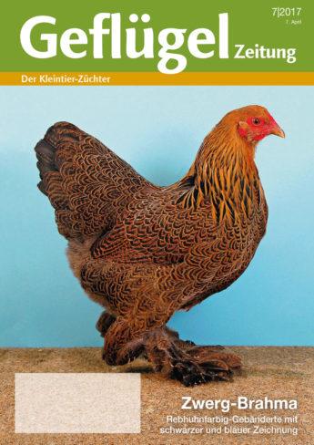 Geflügelzeitung, Ausgabe 7/2017, Titelbild